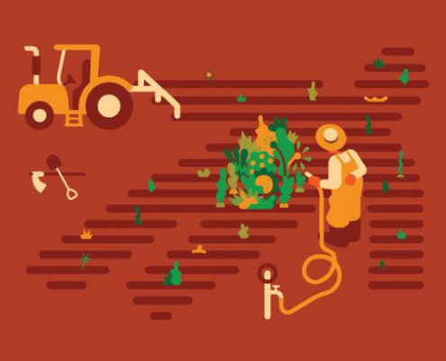 zöldségrostban gazdag étrend